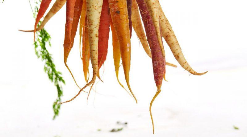 La carotte en folie
